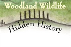 Woodland Wildlife Hidden History