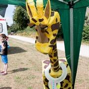 Giraffe by Regis Manor Nursery